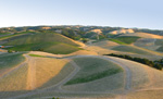 Ballooning over the Hills of Templeton and Paso Robles